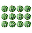 watermelon with different emoticons vector image vector image