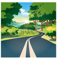 Road through the woods vector image
