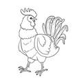 cartoon rooster vector image vector image