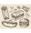 fast food hand drawn cheeseburger burritos ham vector image