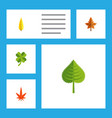 flat icon leaves set of alder maple aspen and vector image vector image