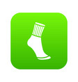 sock icon green vector image