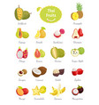 thai fruits set lush food vector image