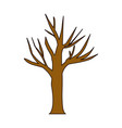 white background with dry tree with thick contour vector image vector image