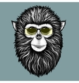 Hipster monkey with yellow sunglasses vector image
