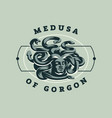 medusa of the gorgon vector image vector image