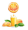 oranges and juice vector image vector image