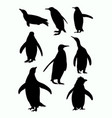 penguins silhouette 02 vector image vector image