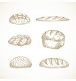 brread sketches set hand drawn vector image vector image