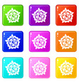 flower icons 9 set vector image vector image
