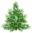 Green fluffy Christmas pine tree in snow vector image vector image