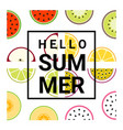 hello summer background with fruits vector image