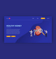 human open kidney health doctor treatment concept vector image vector image