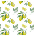 lemon branchand slice seamless pattern vector image