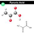 Pyruvic acid molecule vector image vector image