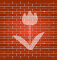 tulip sign whitish icon on brick wall as vector image vector image
