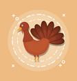 turkey animal cartoon vector image