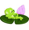 cute frog sleeping cartoon vector image