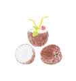 half of coconut and coconut cocktail composition vector image