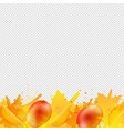 orange mango border with paint transparent vector image vector image
