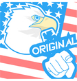 Original american flag vector image