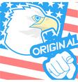 Original american flag vector image vector image