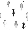 seamless stylish pattern with coniferous pine vector image