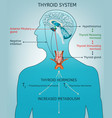 thyroid system poater vector image vector image