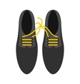 Tied laces on shoes icon flat style vector image vector image