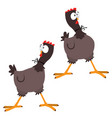 funny cartoon big eyed chicken vector image