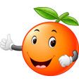 cute orange with face vector image vector image