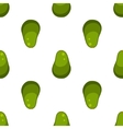 Green avocado fruit pattern vector image