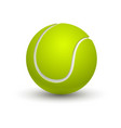isolated green tennis ball on white sport vector image