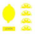 lemon fruit icon set yellow slice in a row cut vector image vector image