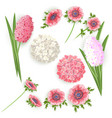 set of flowers for decoration vector image