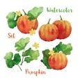 Watercolor Pumpkin Set vector image