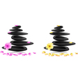 Spa Stones and flowers vector image