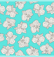 orchid flowers seamless pattern vector image