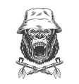 angry gorilla head in panama hat vector image