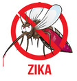 mosquito zika vector image