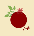 Pomegranate Fruit Icon vector image