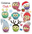 set of christmas owls on a white background vector image