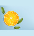 slice ripe orange with green leaves vector image vector image