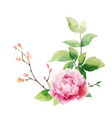 watercolor hand painting wreath peony vector image vector image