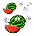 Watermelon fruit cartoon isolated character vector image vector image