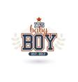 New Baby Boy vector image