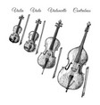 bowed string instruments vector image vector image