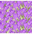 crocus seamless patterm 1 vector image vector image