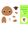 cut and glue baplatypus education developing vector image vector image