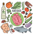 heart health diet human nutrition vector image